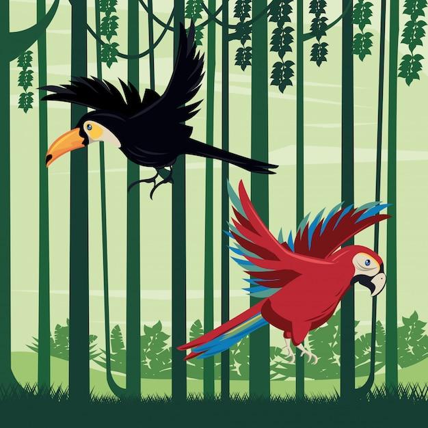 Wilde tukan- und papageienvögel fliegen in der dschungelszene Premium Vektoren