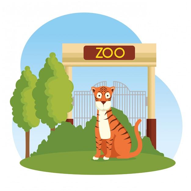 Wildes tier des tigers in der zooreserve Kostenlosen Vektoren