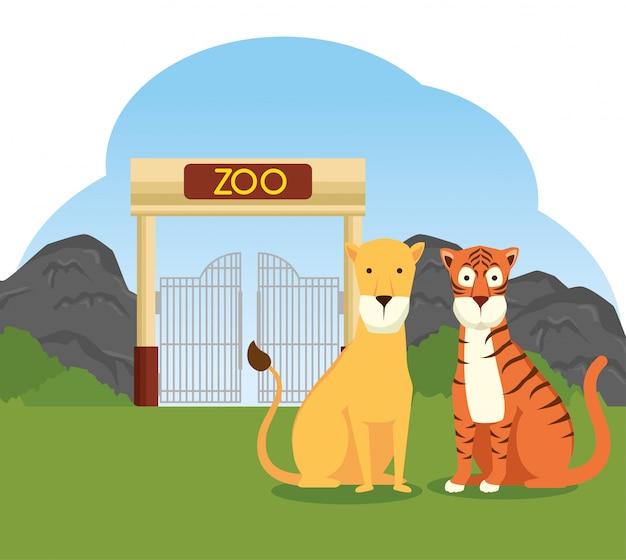 Wildes tier des tigers und des löwes in der zooreserve Kostenlosen Vektoren