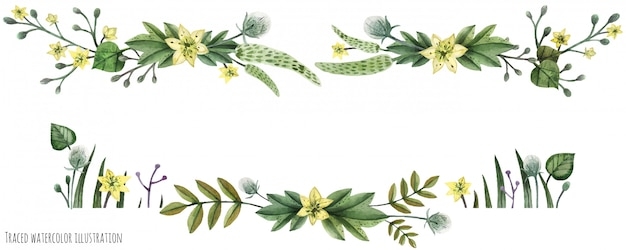 Wildpflanzen-aquarelltitel Premium Vektoren