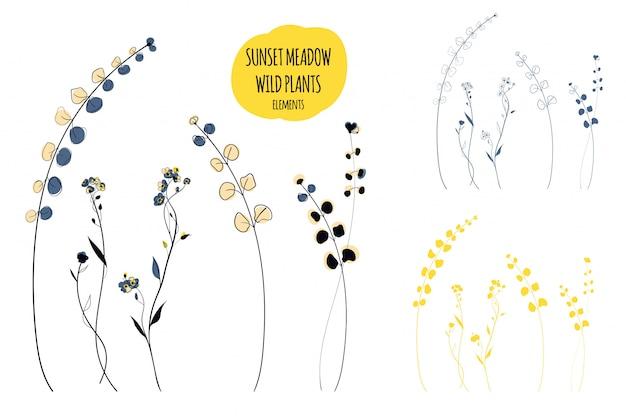 Wildpflanzen-linienkunstillustration im skandinavischen stil Premium Vektoren