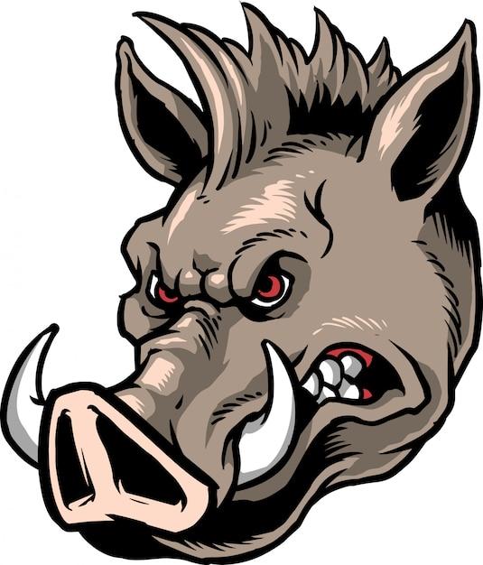Wildschwein Premium Vektoren