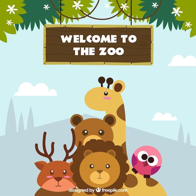 Willkommen Im Zoo Hintergrund Download Der Kostenlosen