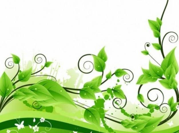 Wirbel pflanze dekoration auf weißem hintergrund Kostenlosen Vektoren