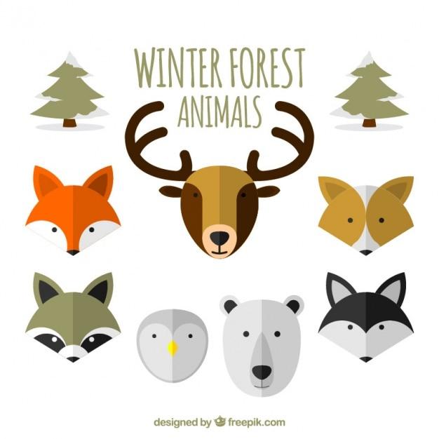wohnung sammlung von winterwaldtiere download der kostenlosen vektor. Black Bedroom Furniture Sets. Home Design Ideas