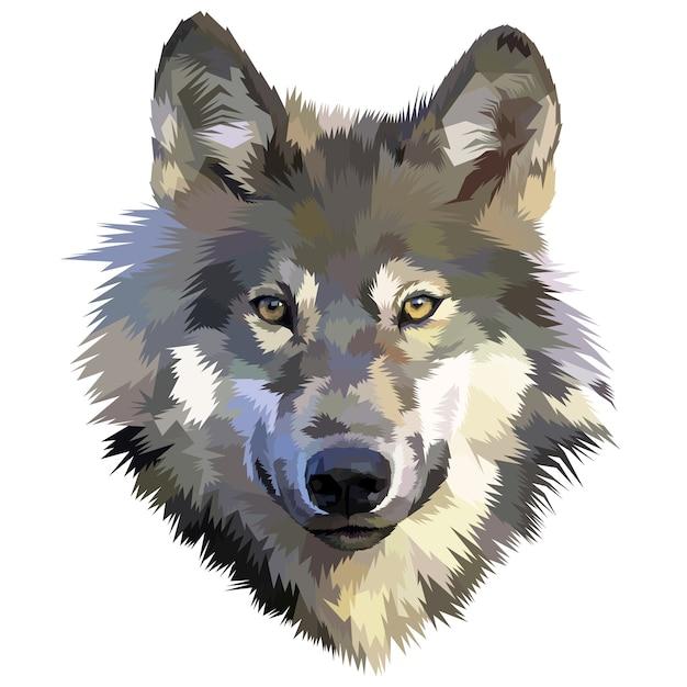 Wolfkopfikone auf polygonalem geometrischem dreiecksstil Premium Vektoren