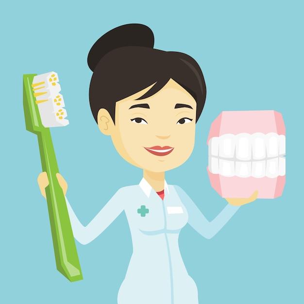 Zahnarzt mit zahnkiefermodell und zahnbürste. Premium Vektoren