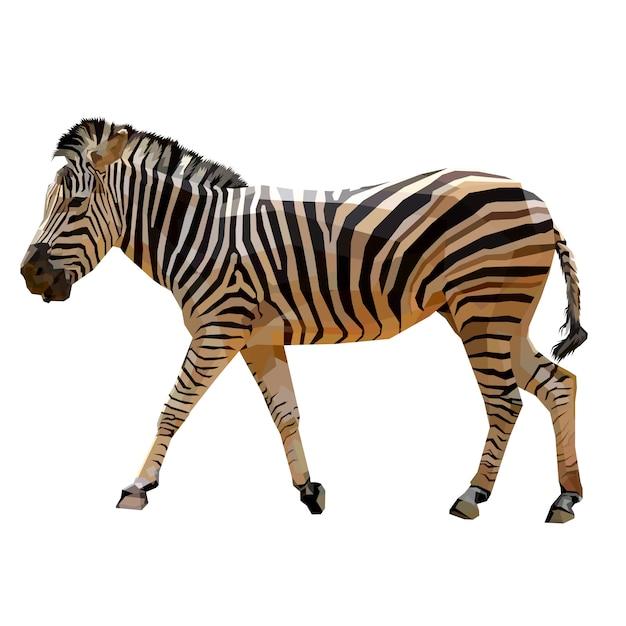 Zebra, der auf geometrische pop-art mit einem weißen hintergrund geht Premium Vektoren