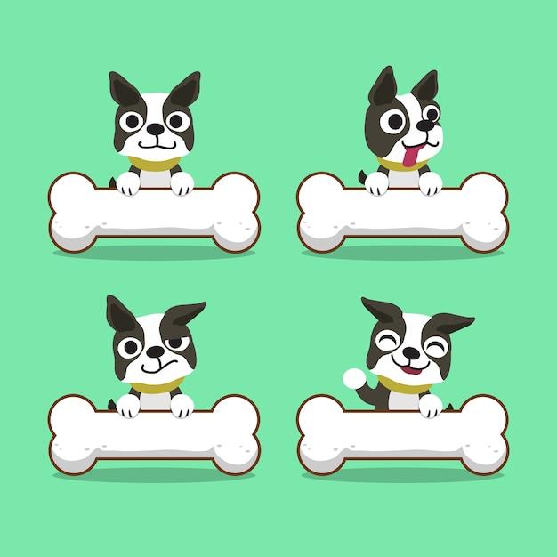 Zeichentrickfilm-figur-boston-terrierhund mit den großen knochen Premium Vektoren