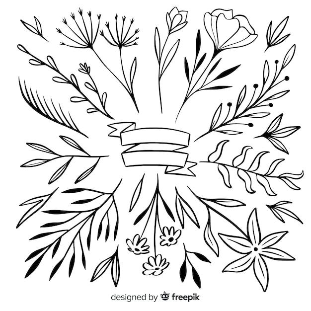 Zierblätter und blumensammlung von hand gezeichnet Kostenlosen Vektoren