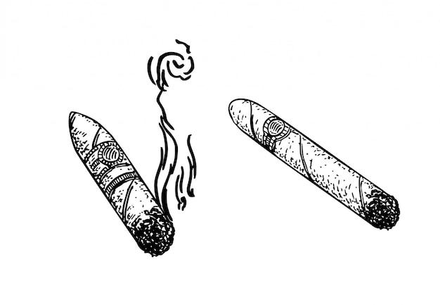 Zigarren stellten stichillustration ein. nachahmung des skizzenstils. schwarzweiss-hand gezeichnet. Premium Vektoren