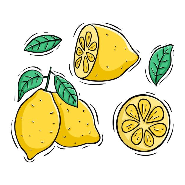 Zitronenscheibe mit farbiger gekritzelart auf weiß Premium Vektoren