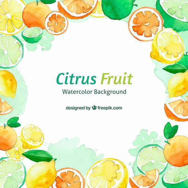 Zitrusfrüchte aquarell hintergrund Kostenlosen Vektoren