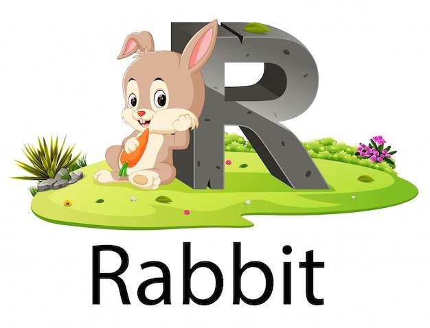 Zoo tier alphabet r für kaninchen mit der guten animation Premium Vektoren
