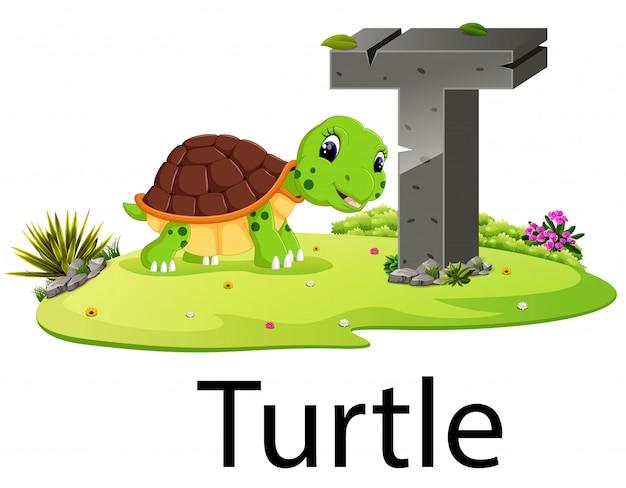 Zoo tier alphabet t für schildkröte mit der guten animation Premium Vektoren