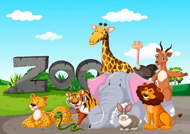 Zootiere im wilden naturhintergrund Kostenlosen Vektoren