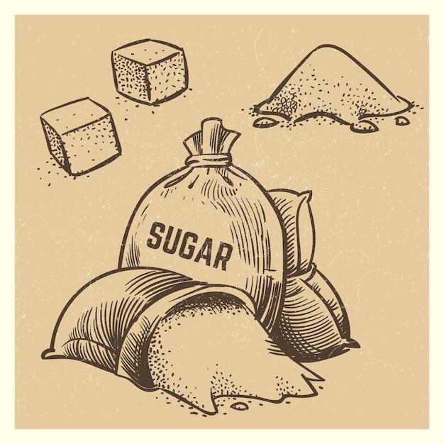 Zucker kritzeleien sammlung. skizze zucker illustration Premium Vektoren