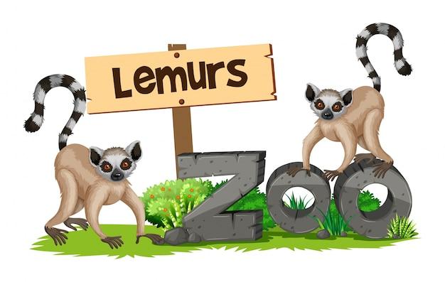Zwei lemurs im zoo Kostenlosen Vektoren