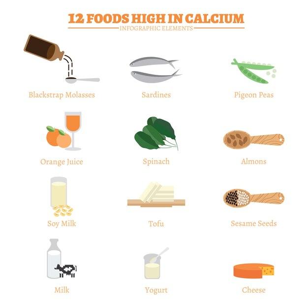 12 alimentos ricos em cálcio. Vetor Premium