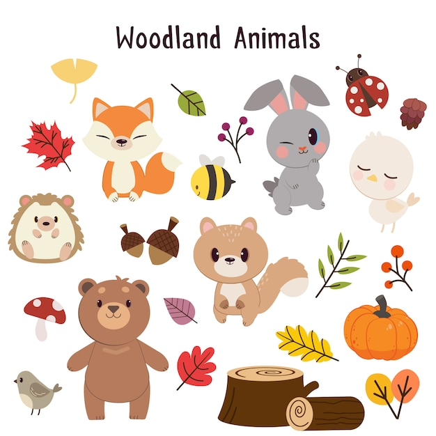 A coleção de animais da floresta definida. Vetor Premium