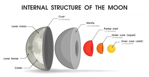 A estrutura interna da lua que é dividida em camadas. Vetor Premium