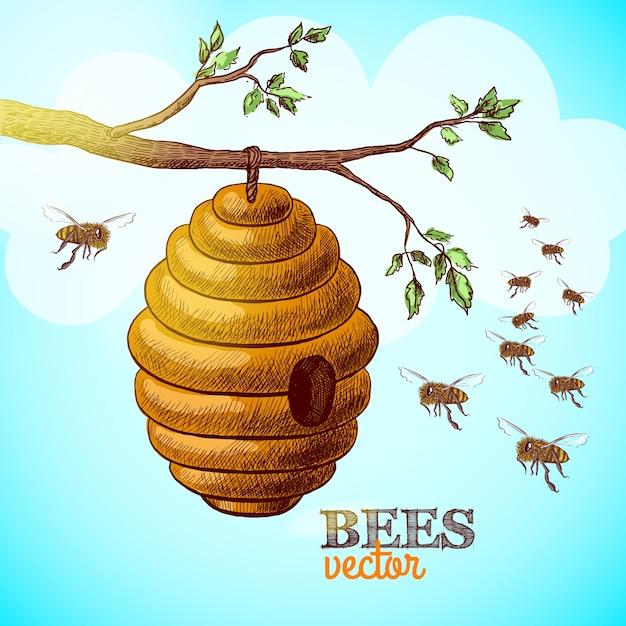 Abelhas de mel e colméia em ramo de árvore ilustração vetorial de fundo Vetor grátis