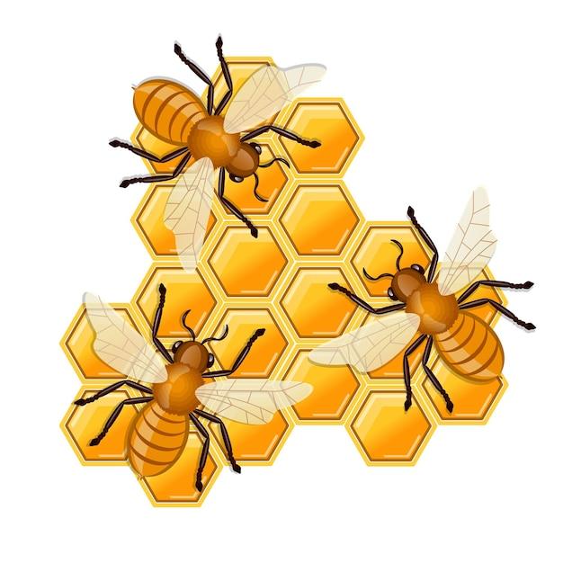 Abelhas sentadas no favo de mel. Vetor Premium