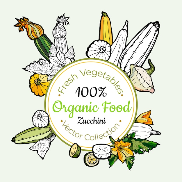 Abobrinha vegetal mantimentos vintage vector adesivo, cartaz, modelo de rótulo. linha de comida fresca de hipster mão desenhada ilustração. Vetor Premium