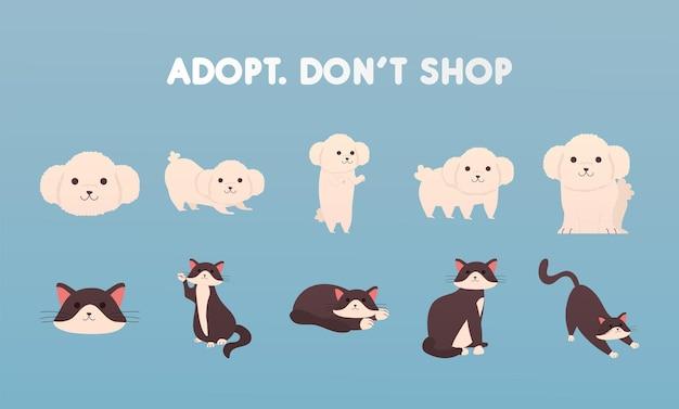 Adote não compre letras com ilustração de grupo de cães e gatos Vetor Premium