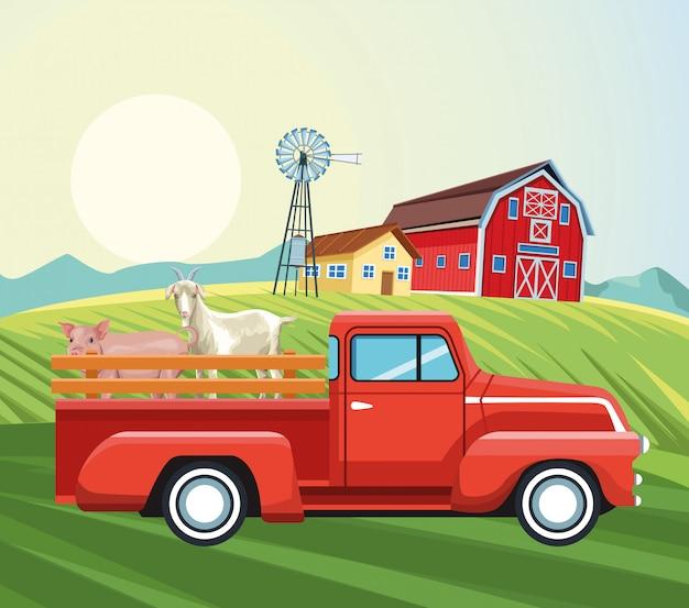 Agricultura celeiro casa moinho de vento captador cabra e campo de porco Vetor Premium