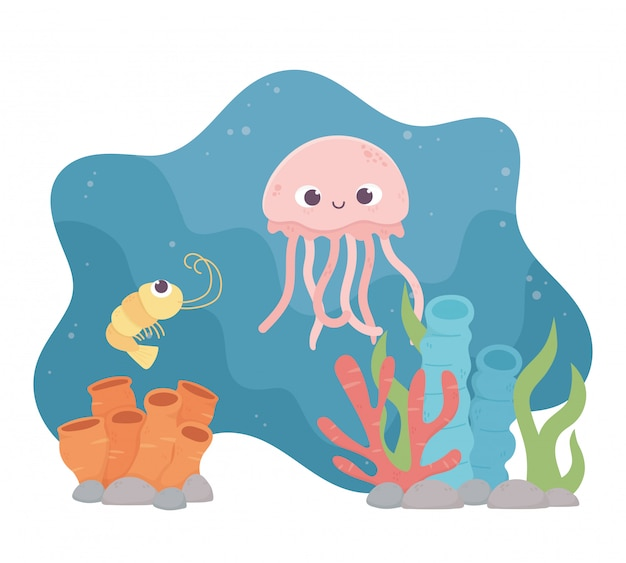 Água-viva camarão vida dos desenhos animados de recifes de corais no fundo do mar Vetor Premium