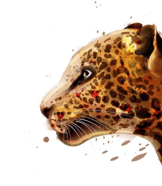 Aguarela leopardo Vetor Premium