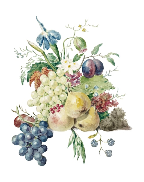 Ainda vida de flores e frutas Vetor grátis