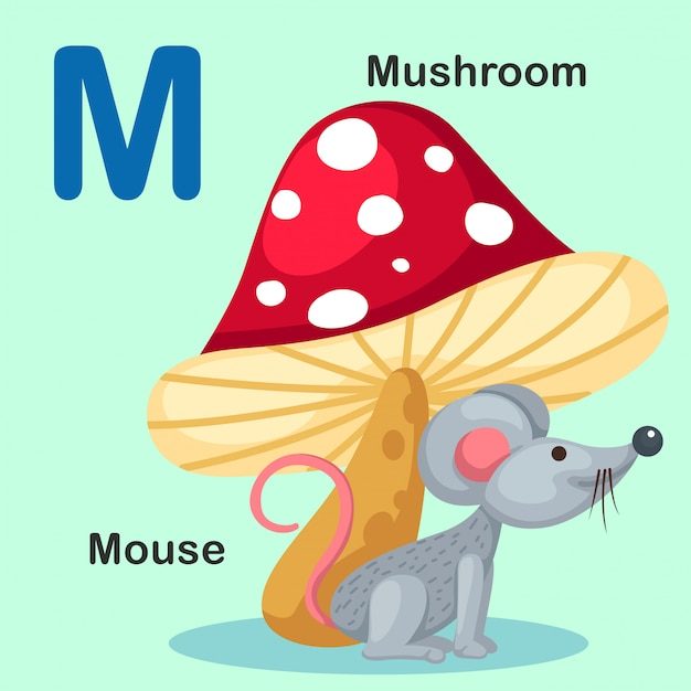 Alfabeto animal de ilustração isolado letra m-mouse, cogumelo Vetor Premium