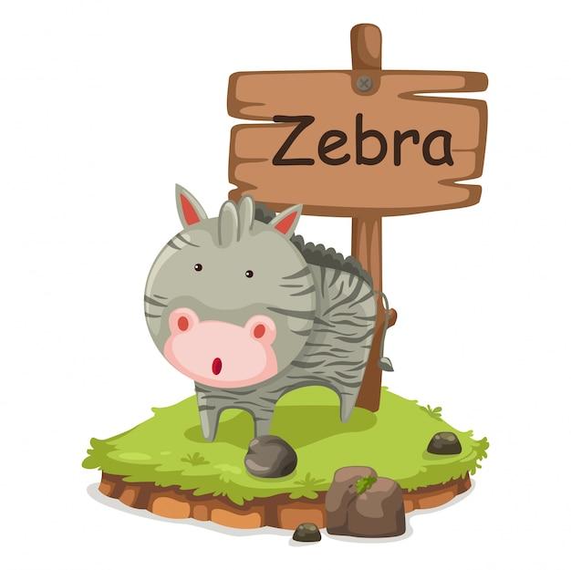 Alfabeto animal letra z para vetor de ilustração de zebra Vetor Premium