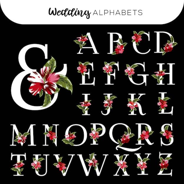 Alfabetos florais do casamento hibiscus vermelho Vetor Premium