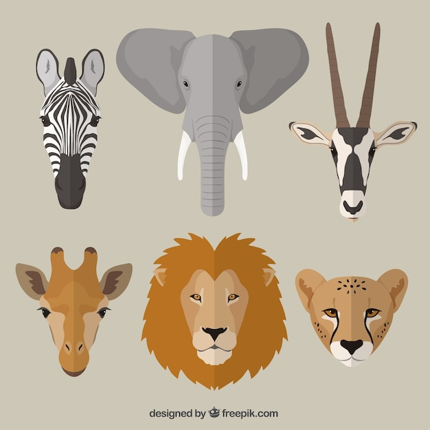 Animais africanos Vetor grátis