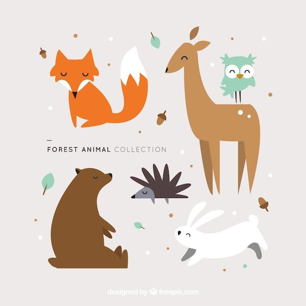 Animais da floresta encantadoras no design plano Vetor grátis