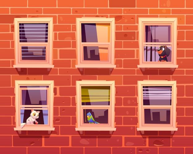 Animais de estimação nas janelas, gato, cachorro e papagaio no peitoril da janela Vetor grátis