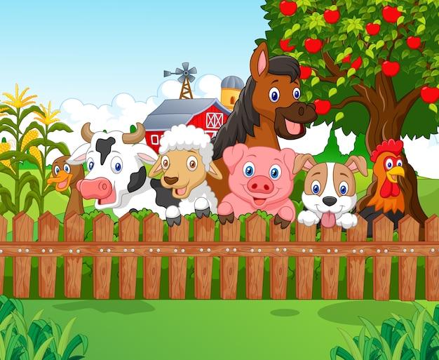 Animais de fazenda de coleção Vetor Premium