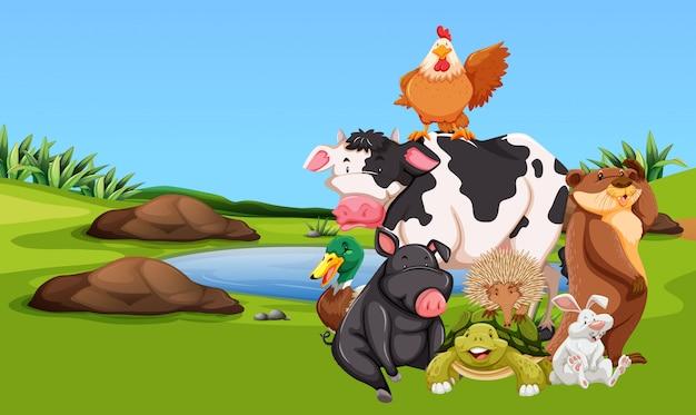 Animais de fazenda no pátio Vetor Premium