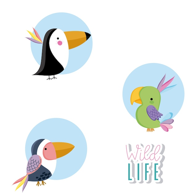 Animais dos animais selvagens bonitos dos desenhos animados ícones redondos Vetor Premium