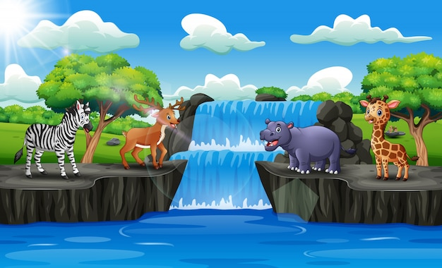 Animais felizes desfrutando na cachoeira Vetor Premium