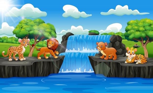 Animais fofos com paisagem de cachoeira Vetor Premium