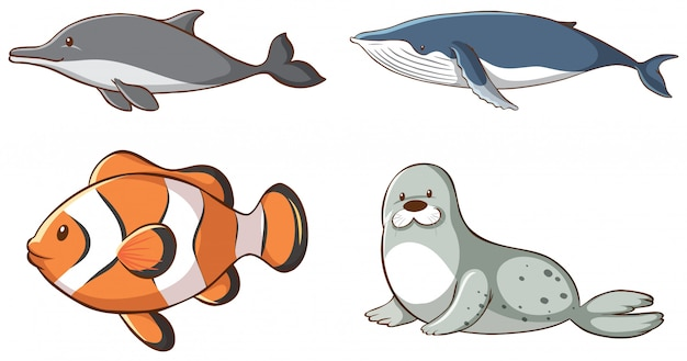 Animais marinhos isolados Vetor grátis