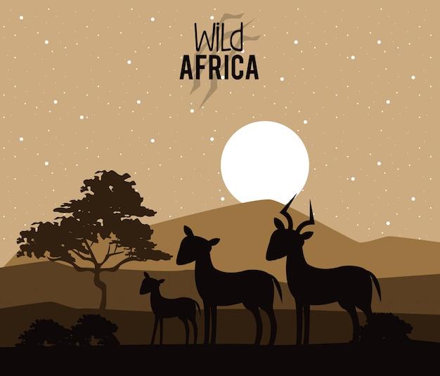 Animais selvagens da áfrica Vetor Premium