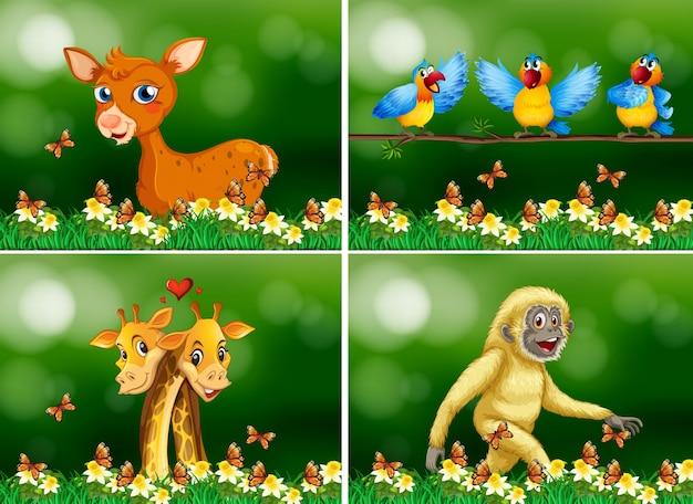 Animais selvagens na floresta Vetor Premium
