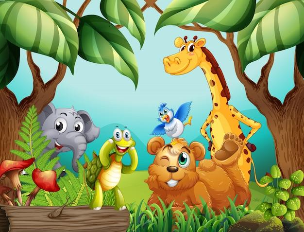 Animais selvagens na natureza Vetor Premium