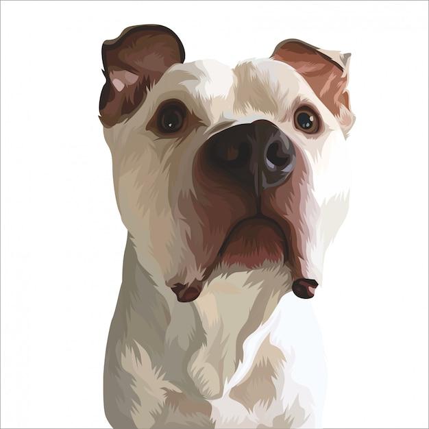Animal de estimação bonito pintado Vetor Premium