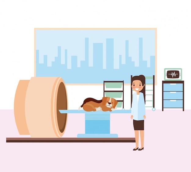 Animal de estimação e veterinário Vetor grátis